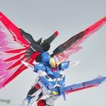 RG デスティニーガンダム&光の翼